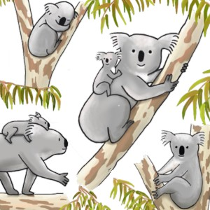 Koalas T-Shirt Design Highlight